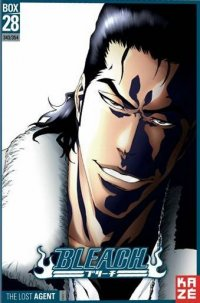 Bleach - collector Vol.28