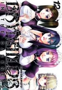 Brynhildr in the darkness T.12