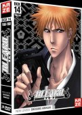 Bleach - collector Vol.14