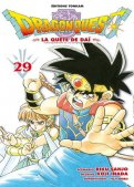 Dragon quest T.29