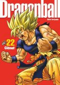 Dragon Ball - Perfect édition T.22