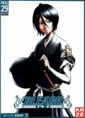 Bleach - collector Vol.29