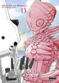 Knights of Sidonia T.13