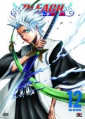 Bleach Vol.12