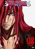 Bleach Vol.8