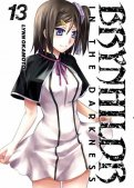 Brynhildr in the darkness T.13