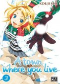 A town where you live T.3